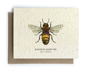 Honey Bee Card - 100% of Profits to Save the Bees - Plantable Seed Paper