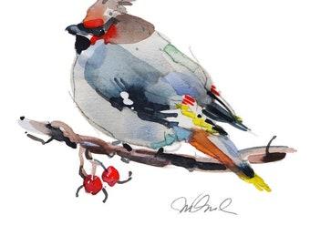 """Bohemian Waxwing, Giclee Print 9x12"""" Watercolor art print animal prints wall decor wall art prints Animal Paintings Bird watching"""