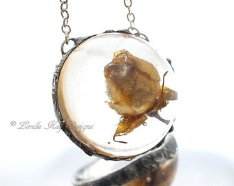 Everlasting Real Rose Necklace Soldered Resin Dome Real Dried Rose Resin Dome Pendant Lorelie Kay Original