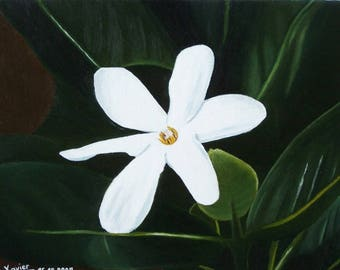 Tiare flower. nature botanical white flower leaf green Tahitian nature dead naive simple exotic travel oil painting oil painting