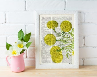 Wall hanging Tagetes or African marigold flower Botanical studio print on Dictionary giclee  wall decor yellow BFL074