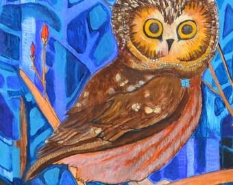 Mini Art Print. 'Saw Whet Owl'. by Jenn Rawling