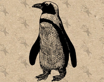 Vintage Penguin Printable image Instant Download printable Vintage picture clipart digital graphic for scrapbooking, burlap etc 300dpi