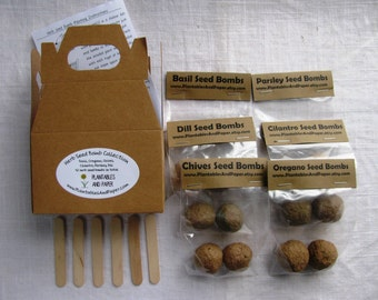 READY TO SHIP- Mini herb garden seed bomb kit - Includes- 2 basil, 2 oregano, 2 parsley, 2 chives, 2 dill, and 2 cilantro- 12 seed bombs