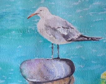 Audouin Seagull, Original watercolor, unique watercolor, animals watercolor, seascape watercolor, watercolor water,  mediterranean sea