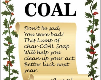 Lump of coal Activated Charcoal Soap Stocking Stuffer for Christmas