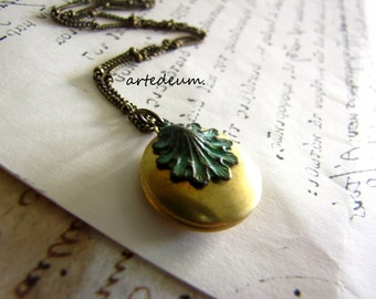 Victorian Shell Locket Necklace in Green and antique gold with verdigris shell and openable two pictures keepsake sea christmas gift for her