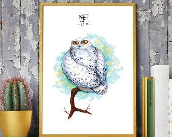 WHITE SNOWY OWL - Original Hand Drawn Illustration - Famous Bird / Snow Owl / Cute / Nature / Birds / Animals / Nursery Art