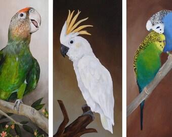 Pet Portrait painting - Pet Paintings - customized realistic pet portrait - personalized custom pet bird portraits from your photo - pet art