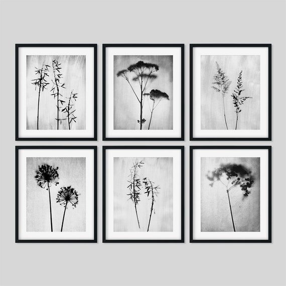 Set of 6 framed prints floral print set black and white