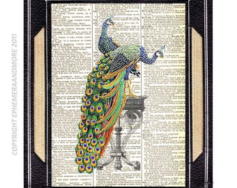 PEACOCK COUPLE VICTORIAN art print wall decor illustration on upcycled vintage dictionary book page green love wedding anniversary 8x10, 5x7
