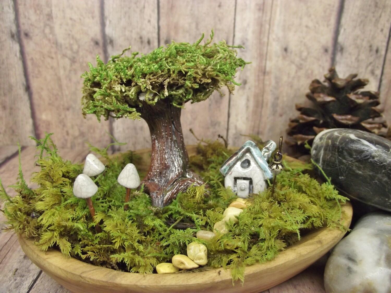 Fairy Garden Terrarium. 🔎zoom Fairy Garden Terrarium U