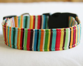Dog Collar-Rainbow Stripe Yellow- Green- Red Orange Blue- Adjustable Dog- Pet Collar Small to Large Breed Dog-1 inch 1.5 -2 inch width