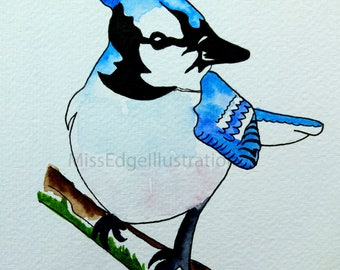 Blue Jay Watercolour