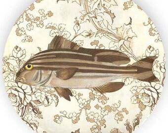 Fish no. 6 plate