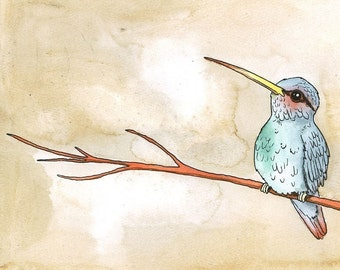 Hummingbird on a Red Branch