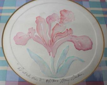 Dutch Iris II and Iris II, By Mary Dinkins