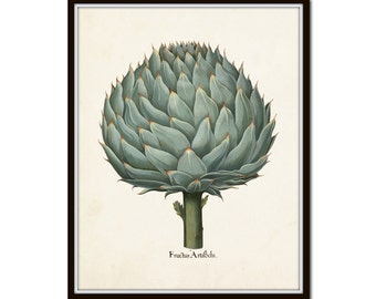 Antique Artichoke Print,  Giclee, Wall Art, Kitchen Art, Home Decor, Art Print, Botanical Print, Vegetable Print,Illustration, Cottage Decor