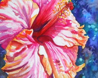 Tropical Hibiscus 4 5x7 art print from Kauai Hawaii hot pink orange blue exotic flower