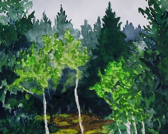 Forest Forest, Ore Mountains, fine-print 20x30 cm, poster 30x40 cm, fine-print 29, 7x42 cm, original watercolor 24x30 cm