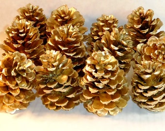 Gold pine cones for wedding arrangements, bouquets, wedding arches, backdrops and beautiful table decor.Wonderful wreaths and centerpieces.