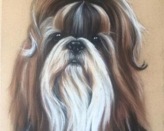 Pet Portraits by artist Gemma Weighill