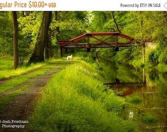 SALE 20% Off Delaware Canal and Towpath in Spring, Landscape Photograph, Bucks County, Pennsylvania, Path, Morning, Reflection, Rustic, Home