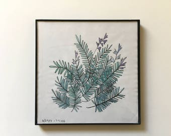 74/100: Lavender Plant - original framed watercolor illustration