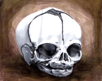 Bizarre Fetal Skull Watercolor and Ink Painting | Original