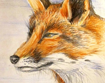 Fox print from original artwork