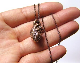 Anatomical Heart Necklace on a 20 inch chain (br)