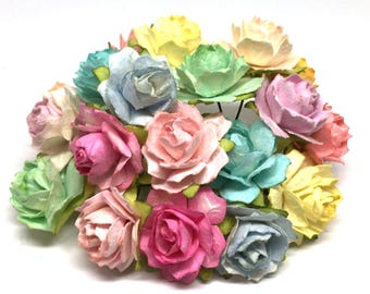Light Pastel Mix Tattered Roses Tr024