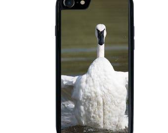 Swan Phone Case, iPhone 5 5s 6 6s 6+ 6s+ SE 7 7+ iPod 5 6 Case, Adult Trumpeter Swan Flaps Wings, Bird, Animal, Wildlife