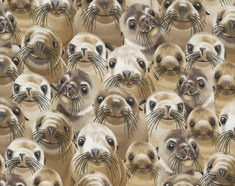 Timeless Treasures Animals Selfie Sea Lions Packed 100% Cotton Fabric by the yard (TT285)