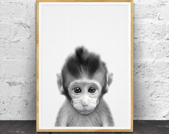 Baby Monkey Print, Baby Monkey Wall Art, Baby Animal, Nursery Animal Print, Monkey Print, Safari Animal, Baby Monkey, Baby Monkey Photo