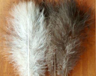 White & Black Turkey Feathers Cruelty Free Humane Naturally Molted Real Feathers #503