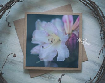 Floral Photo Card - Rhododendron