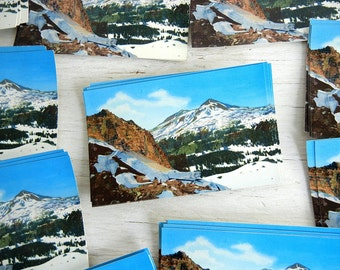 Cascade Mountains Postcards | Middle and North Sister Mountains | Ponderosa Pines | Photochrom
