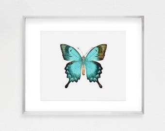 Teal Butterfly, Watercolor Art, Butterfly Print, Watercolor Butterfly, Butterfly Decor, Printable Art, Home Decor, Instant Download