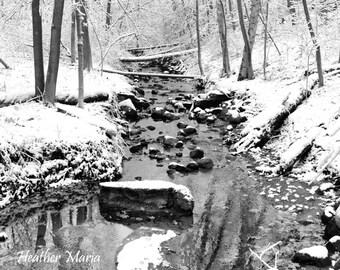Winter upon a stream, Grant Park South Milwaukee, fine art Photography