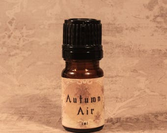 AUTUMN AIR / Autumn handmade perfume / Romantic perfume oil / Handmade perfume / Haunting autumn scent