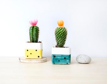 Small ceramic square planter, Ceramic plant pot, Succulent planter, Ceramics pottery, Cacti plant pot, Planter flower pot, Square plant pot