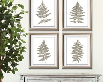 Fern Fantasy Impressions (Series B4) Set of 4 - Art Prints (Featured in Italian Stone) Nature Woodland Inspired