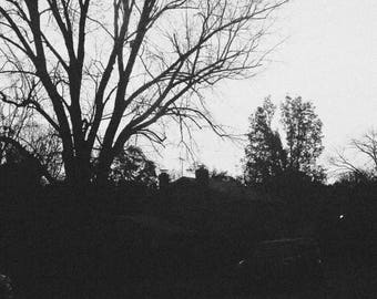 Natural Landscape Photography