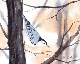 Nuthatch Watercolor Print from an Original Painting- Two sizes- 5 x 7 inches and 8 x 10 inches- White breasted Nuthatch Winter Snow Bird Art