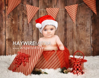 Newborn, Baby, Toddler, Child, Christmas Present Photography Digital Backdrop Prop for Photographers
