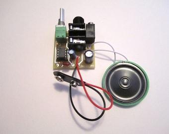 Assembled Kit: Portable Guitar Amp w/ Speaker & 10X Gain