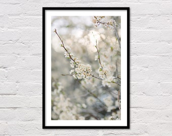 Spring Print, Spring Decor, Spring Wall Art, Blossoms, White Flowers, Floral Printable, Minimalist, Flower Photography, Digital Download