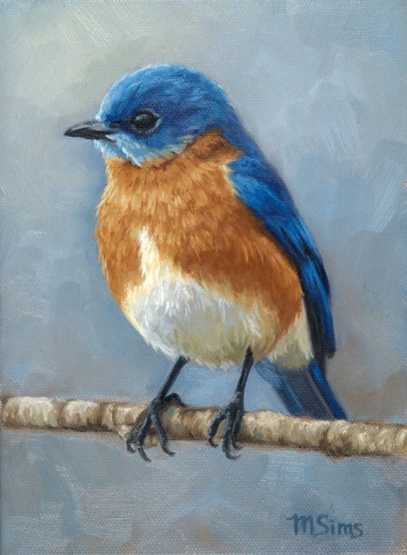Eastern Bluebird Bird Painting Open Edition Print