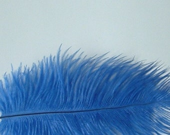 Royal Blue Ostrich Feathers